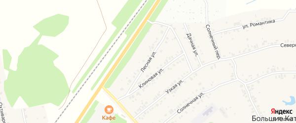 Лесная улица на карте деревни Большие Катраси Чувашии с номерами домов