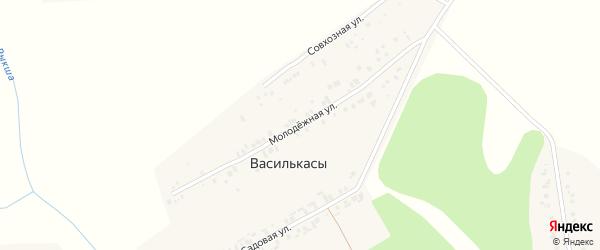Молодежная улица на карте деревни Василькас с номерами домов