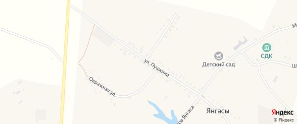 Улица Пушкина на карте деревни Янгасы с номерами домов