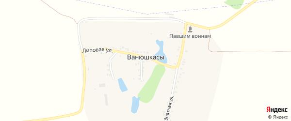 Липовая улица на карте деревни Ванюшкас с номерами домов