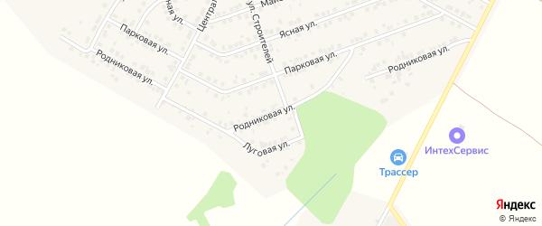 Родниковая улица на карте деревни Сятракасы (Лапсарского с/п) с номерами домов