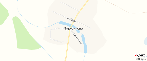 Карта деревни Турусиново в Кировской области с улицами и номерами домов