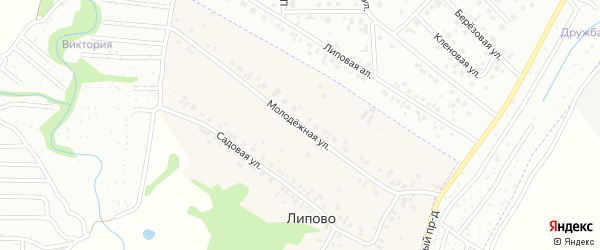Молодежная улица на карте деревни Липово с номерами домов