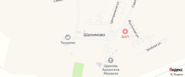 Молодежная улица на карте села Шалимово Архангельской области с номерами домов