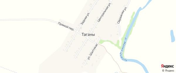 Совхозная улица на карте деревни Таганы с номерами домов