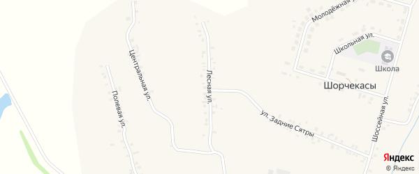 Лесная улица на карте деревни Шорчекасы Чувашии с номерами домов