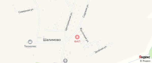 Центральная улица на карте села Шалимово Архангельской области с номерами домов