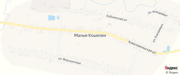 Улица Кокоревых на карте деревни Малые Кошелеи с номерами домов