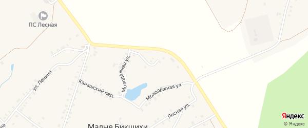 Молодежная улица на карте деревни Малые Бикшихи с номерами домов
