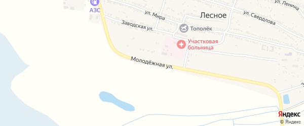 Молодежная улица на карте Лесного села Астраханской области с номерами домов