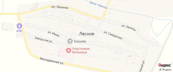 Улица Зои Космодемьянской на карте Лесного села с номерами домов