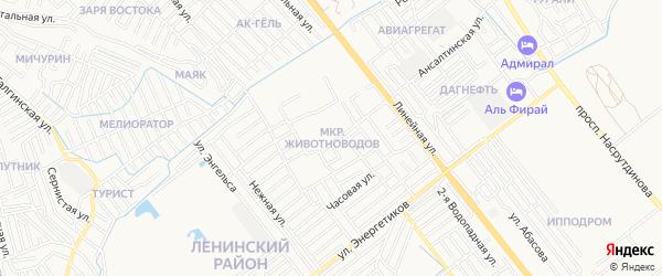 Микрорайон Животноводов на карте Махачкалы с номерами домов
