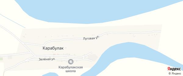 Луговая улица на карте поселка Карабулака Астраханской области с номерами домов