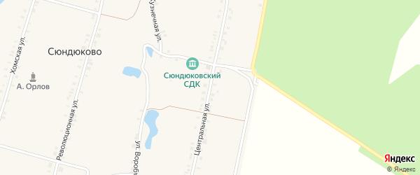 Центральная улица на карте деревни Сюндюково с номерами домов