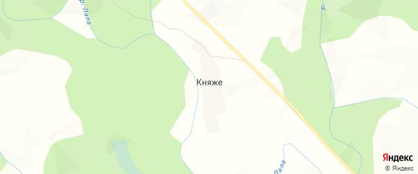Карта деревни Княже в Кировской области с улицами и номерами домов