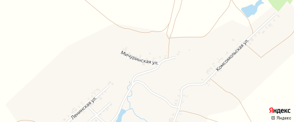 Мичуринская улица на карте деревни Астакасы Чувашии с номерами домов