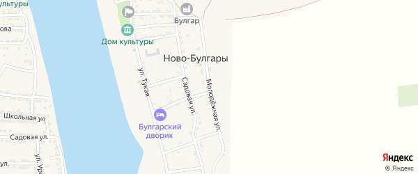 Молодежная улица на карте села Ново-Булгары Астраханской области с номерами домов