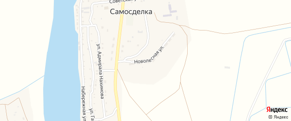 Новолесная улица на карте села Самосделки Астраханской области с номерами домов