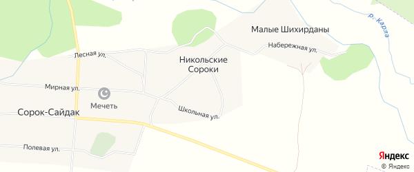 Карта деревни Никольские Сороки в Татарстане с улицами и номерами домов