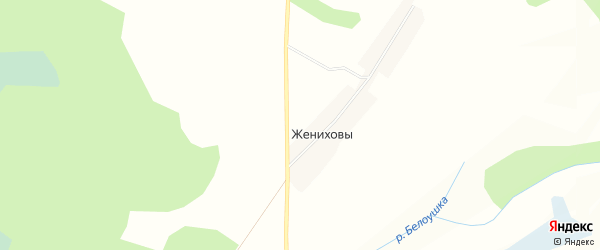 Садовое товарищество Дружба на карте Даровской района Кировской области с номерами домов
