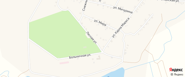 Лесная улица на карте деревни Арабосей Чувашии с номерами домов