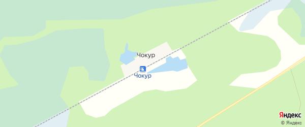 Карта железнодорожной станции Чокура в Архангельской области с улицами и номерами домов