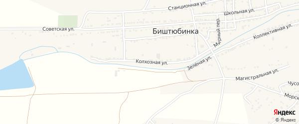 Колхозная улица на карте села Биштюбинка Астраханской области с номерами домов