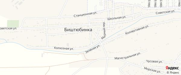 Колхозный переулок на карте села Биштюбинка Астраханской области с номерами домов