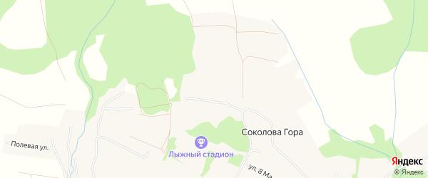 Карта деревни Соколовой Гора в Архангельской области с улицами и номерами домов