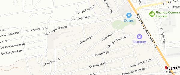 Лесная улица на карте села Солянки Астраханской области с номерами домов