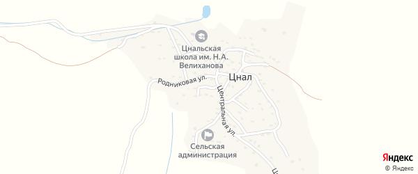 Улица Центральная переулок-1 на карте села Цнала Дагестана с номерами домов