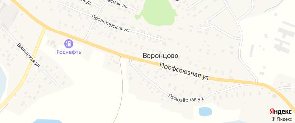 Профсоюзная улица на карте деревни Воронцово Архангельской области с номерами домов
