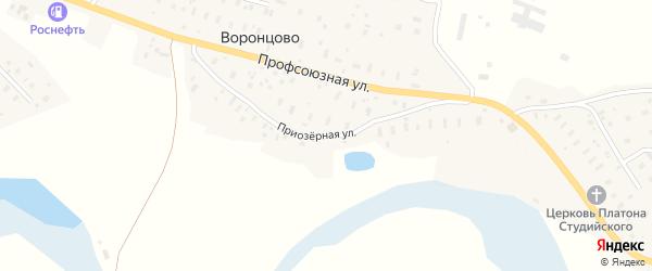 Приозерная улица на карте деревни Воронцово с номерами домов