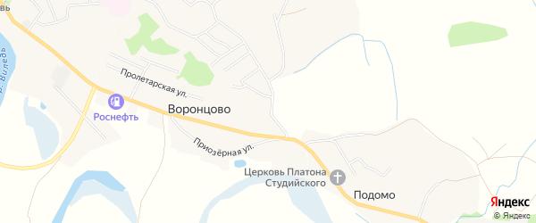 Карта деревни Воронцово в Архангельской области с улицами и номерами домов