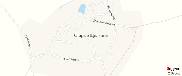 Центральная улица на карте деревни Старые Щелканы с номерами домов