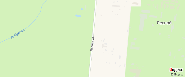 Лесная улица на карте поселка Лесной (Шойбулакское с/п) Марий Эл с номерами домов