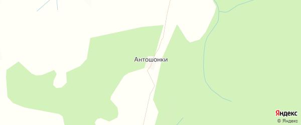 Карта деревни Антошонки в Кировской области с улицами и номерами домов