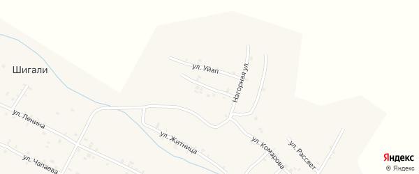 Улица М.Сеспеля на карте села Шигали с номерами домов