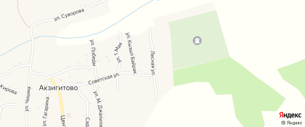 Лесная улица на карте села Акзигитово Татарстана с номерами домов