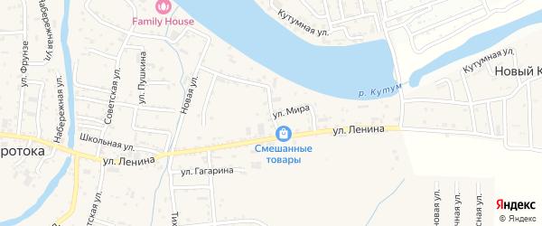 Улица Щорса на карте села Три Протоки с номерами домов