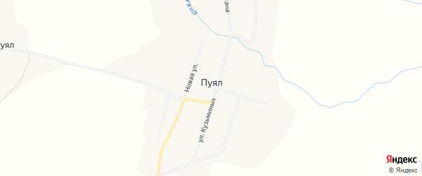 Карта деревни Пуяла в Марий Эл с улицами и номерами домов