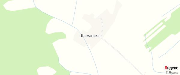 Карта деревни Шаманихи в Архангельской области с улицами и номерами домов