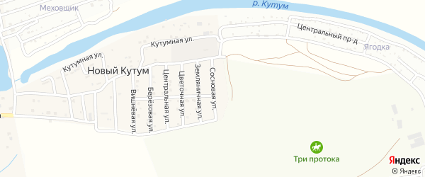 Сосновая улица на карте поселка Нового Кутума Астраханской области с номерами домов
