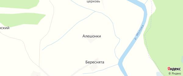 Карта деревни Алешонки в Кировской области с улицами и номерами домов