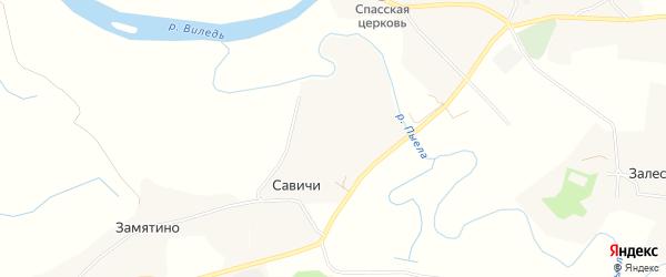 Карта деревни Савичей в Архангельской области с улицами и номерами домов