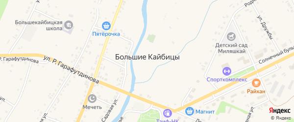Улица Победы на карте села Большие Кайбицы Татарстана с номерами домов