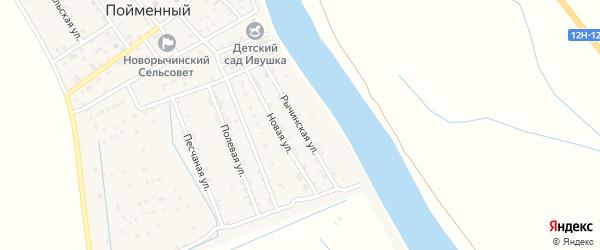 Рычинская улица на карте Пойменного поселка Астраханской области с номерами домов