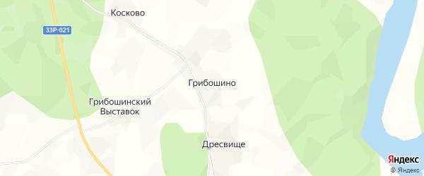 Карта деревни Грибошино в Кировской области с улицами и номерами домов