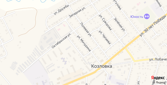 Улица Мичурина в Козловке с номерами домов на карте. Спутник и схема онлайн