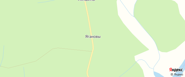 Карта деревни Ягановы в Кировской области с улицами и номерами домов